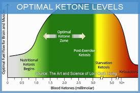 Optimal Ketosis Chart 46 Veritable Ketone Levels Chart Keto Diet