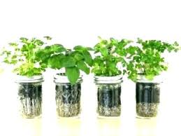 herb garden kit outdoor home depot mason diy instructions starter
