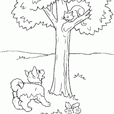 Small Picture Animals coloring dog cat drawing colorin animals free coloring
