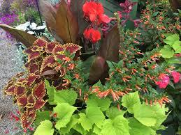 photos for outdoor pride garden center yelp