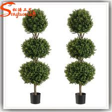 Dsign  Various Decorative Plants For Home  YouTubeDecorative Plants For Home