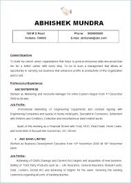 First Job Resume Template Publicassets Us