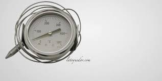 Thermomètre Pour Four à Pizza Et à Pain 0500c Thermomètre De