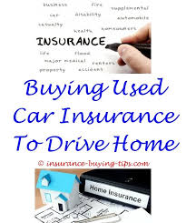 Long Term Life Insurance Quotes Interesting Need Auto Insurance Quotes Buy Health Insurance Long Term Care