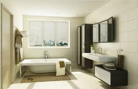 bathroom closet design. Bathroom Closet Ideas For Decoration D And Bathtub Green Wall Design