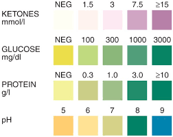 Correct Urine Sugar Chart Urine Protein Chart Urine Test