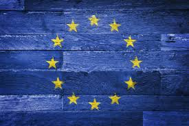 Image result for Europe flag