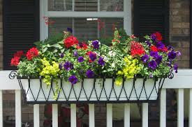 ... Window Boxes, Flower Boxes, Exterior Shutters, Hanging Baskets, Planters  And ...