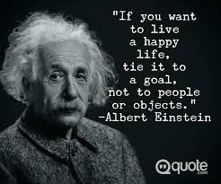Albert Einstein Quotes About Life Adorable Einstein Quotes About Life Stunning Quotes 48 Albert Einstein