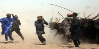Image result for Benue Killings: Youths Raise Militia Group To Tackle Herdsmen