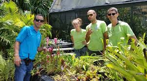 the coleman lienhart savage garden is moving to the marie selby botanical gardens in sarasota