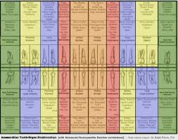Electrical Architecture Of The Human Body Alan Tatourian