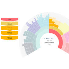 X Dna Fan Chart Dna Painter Help And Advice On How To Use This Site