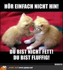 Fluffig Und Süüüüß Lustige Bilder Auf Spassnet