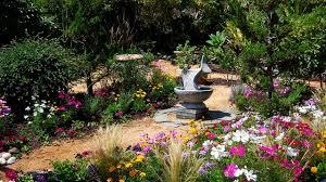 drought resistant garden. Drought Tolerant Flower Garden Mediterranean-garden Resistant