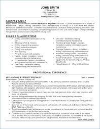 Accounts Payable Resume Awesome Accounts Payable Resume Igniteresumes