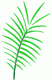 Image result for Palm Sunday clip art