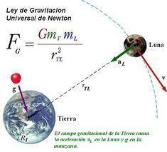 10 ideas de La fuerza gravitacional | fuerza gravitacional, leyes de  newton, fuerza