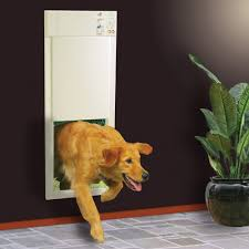 electronic dog doors. Electronic Pet Door - Photoshop Disasters Aside \u2013 This Automatic Is Perfect For The Lazy Dog Doors