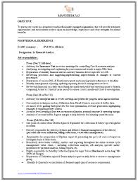 Keywords For Financial Analyst Resume Financial Analyst Resume