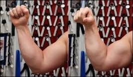 forearm size grip training for the powerbuilder