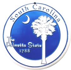 Image result for palmetto state