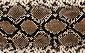 Snake Skin Pattern Impressive Images For Diamondback Rattlesnake Skin Pattern Bleach Ideas