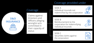 what directors and officers insurance is all about