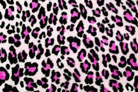 Leopard Pattern Awesome Pink Black Leopard PatternSpotted Fur Animal Print Background Door