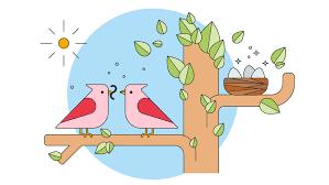 birds family vector free