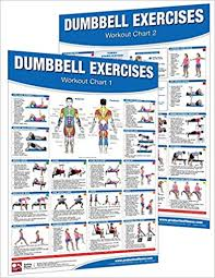 Back Exercises Gym Chart Dumbbell Workout Poster Chart Set Shoulder Training
