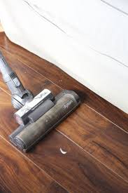 Decorating For Your Dogs. Laminate Floor CleaningHow ...