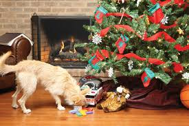 Christmas Tree Bad Dog 2