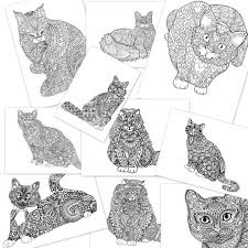 Small Picture Cat And Kitten Coloring Book Coloring Pages