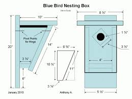 usgs bluebird house plans using one board