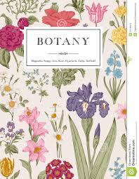 Botany Vintage Floral Card Stock Vector Illustration Of