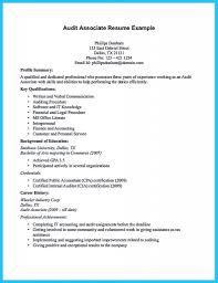 Resume Audit Amazing Auditing Auditor Photo Examples