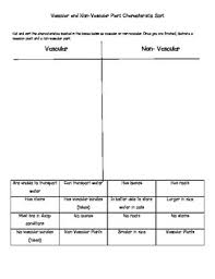 Venn Diagram Of Vascular And Nonvascular Plants Vascular Non Vascular Plants Worksheets Teaching Resources