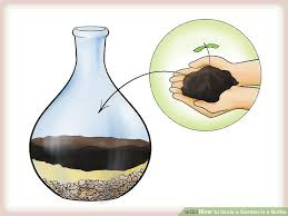 image titled grow a garden in a bottle step 4