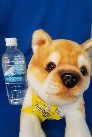 <b>Mameshiba</b> Futeshiba Shibainu <b>Japanese</b> Dog <b>Stuffed animal</b> ...