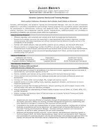 Resume Professional Summary Examples Customer Service Professional Summary On Resume Career Examples Amazing For Customer 21