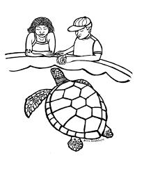 Small Picture Sea Turtle Coloring Page 1 Sea Turtle Inc