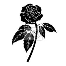 Obraz černá Růže Ilustrace Tetování Na Bílém Pozadí Izolovaný Vektor