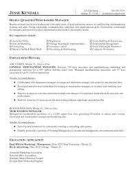 Merchandiser Resume Sample Free Visual Merchandising Examples