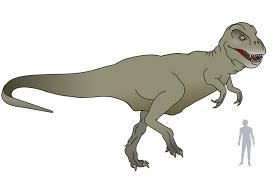 Afbeeldingsresultaat voor tyrannosaurus rex naturalis
