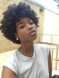 Natural African Hairstyles 10 Photos Of Stunning Black Women Across Social Media African Hair