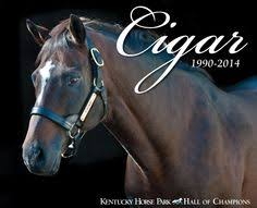 <b>Cigar</b>, <b>Hall</b> of Fame Member and 2-Time Horse of the Year, died at ...