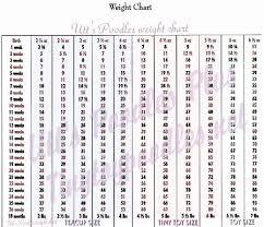 Toy Poodle Growth Chart Standard Poodle Size Chart Www Bedowntowndaytona Com