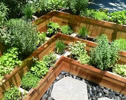 Small Picture Innovative Vegetable Gardening In South Florida Florida Vegetable