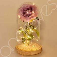 extra large enchanted lavender rose in glass dome bell jar with led lights